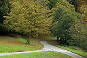Autumn along the footpath to Dunstaffnage Castle, near Oban, Scotland <br /> <br /> Editions:- Open Edition Print / Stock Image