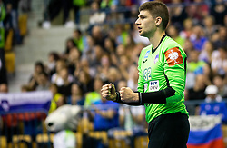 Rok Zaponsek of Slovenia reacts during handball match between National teams of Slovenia and Netherlands in Qualifications of 2020 Men's EHF EURO, on April 14, 2019, in Arena Zlatorog, Celje, Slovenia. Photo by Vid Ponikvar / Sportida
