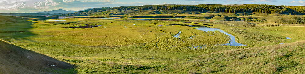 Large wet floodplain in Hayden Valley along the Yellowstone River, showing wildlife trails in the grassland. Yellowstone National Park, © David A. Ponton
