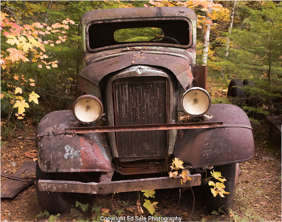 A colorful antique car sits rusting in the woods at Jawbone Flats in the Willamette National in the Oregon cascades