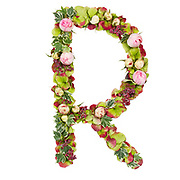 Capital Letter R Part of a set of letters, Numbers and symbols of the Alphabet made with flowers, branches and leaves on white background