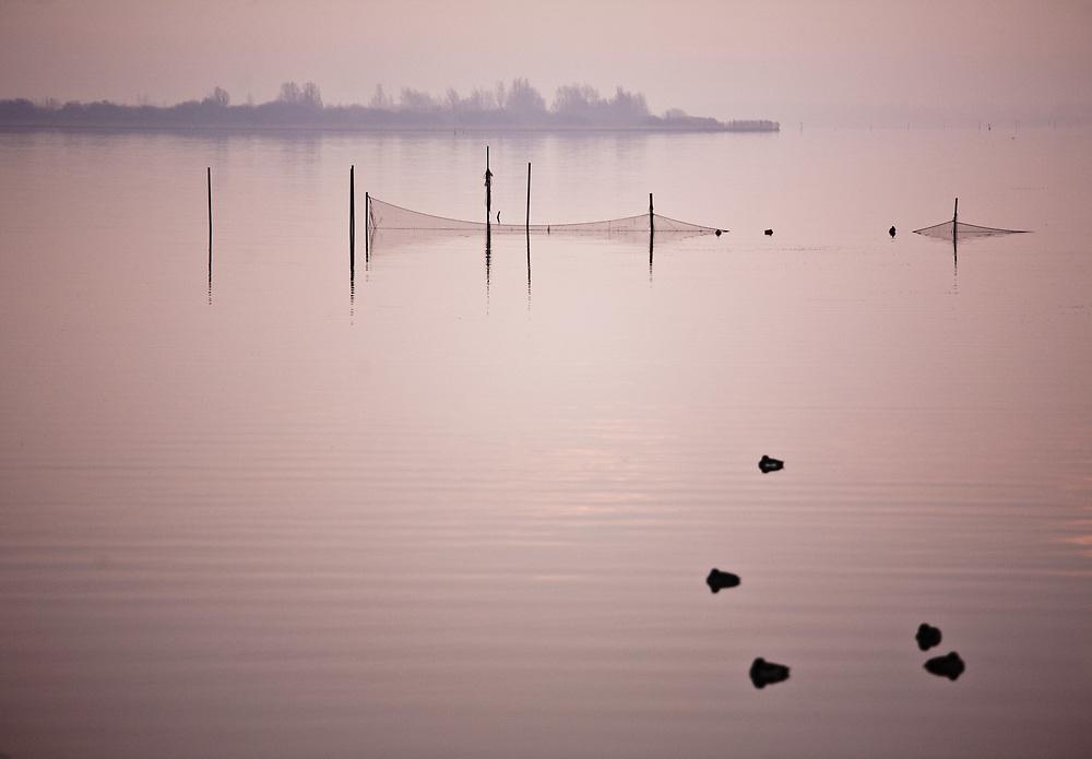 Fishing nets and ducks on a quiet Lauwersmeer, just after sunrise // Het Lauwersmeer ligt er rustig bij vlak na zonsopkomst.