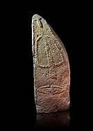Late European Neolithic prehistoric Menhir standing stone with carvings on its face side. The representation of a stylalised male figure starts at the top with a long nose from which 2 eyebrows arch around the top of the stone. below this is a carving of a falling figure with head at the bottom and 2 curved arms encircling a body above. at the bottom is a carving of a dagger running horizontally across the menhir. Excavated from Pranu Maore I site,  Laconi. Menhir Museum, Museo della Statuaria Prehistorica in Sardegna, Museum of Prehoistoric Sardinian Statues, Palazzo Aymerich, Laconi, Sardinia, Italy. Black background. .<br /> <br /> Visit our PREHISTORIC PLACES PHOTO COLLECTIONS for more photos to download or buy as prints https://funkystock.photoshelter.com/gallery-collection/Prehistoric-Neolithic-Sites-Art-Artefacts-Pictures-Photos/C0000tfxw63zrUT4