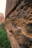 Rock wall (detail) in the Grand Wash Capitol Reef National Park, UTAH