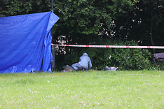 Brixton PArk Murder