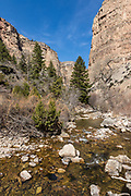 Devil's Canyon in the Northwest section of the Bighorn Basin of Wyoming