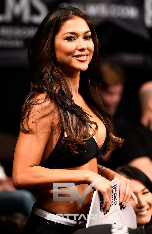 LAS VEGAS, NV - DECEMBER 03:  UFC Octagon Girl Arianny Celeste looks on during The Ultimate Fighter Finale event inside the Pearl concert theater at the Palms Resort & Casino on December 3, 2016 in Las Vegas, Nevada. (Photo by Jeff Bottari/Zuffa LLC/Zuffa LLC via Getty Images)