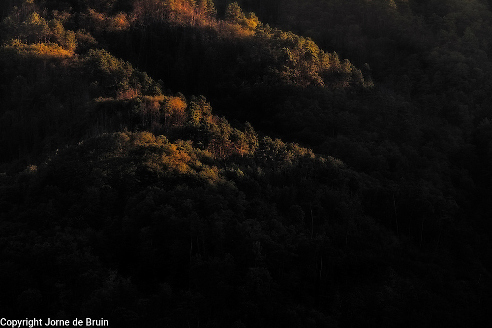 The setting sun illuminates trees in autumnal colours on a forested tuscan mountain.