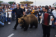 A proud Romani with his bears from the Carpathian Mountains. The musicians and bears of Urs Kapatz. The procession of Saint Sara leaves the church and makes its way down to the seashore, surrounded by thousands of Roma, Gypsy, Gitan and Manouche pligrims, and flanked by Traditional Camargaise Guardians and their horses. <br /><br />Europe, France, Camargue, Saintes Maries de la Mer. Gypsy music, dance and occasionally even bears are part of the traditional culture brought by Gypsies to the festival at Saintes Maries de la Mer, May every year. The Gypsy pilgrimmage brings gypsies from all over Europe for their annual festival.