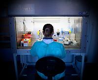 Bialystok, 16.12.2009. Bialostocka Wojewodzka Stacja Sanitarno Epidemiologiczna ( Sanepid ) prowadzi diagnostyke w kierunku wirusa grypy A / H1N1v. Badanie jest wykonywane metodą biologii molekularnej real time RT-PCR N/z badanie probek fot Michal Kosc / AGENCJA WSCHOD
