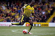 Odion Ighalo of Watford taking a shot at goal. Barclays Premier league match, Watford v Sunderland at Vicarage Road in Watford, London on Sunday 15th May 2016.<br /> pic by Steffan Bowen, Andrew Orchard sports photography.