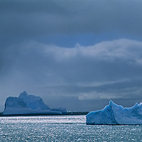 Icebergs float in the Southern Ocean, near the Antarctic Peninsula.
