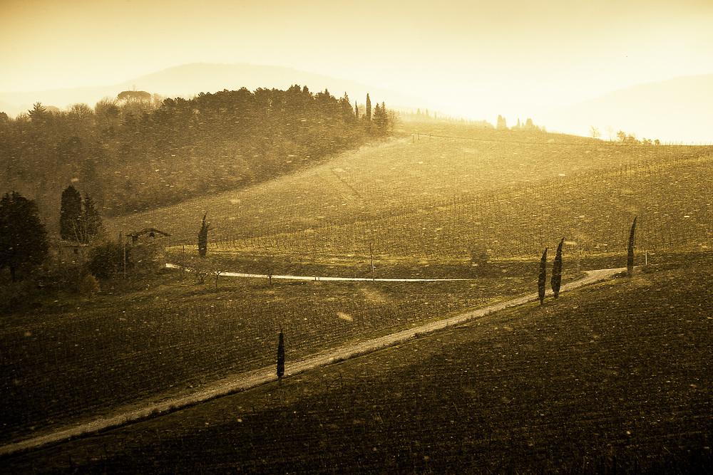 Snow storm at sunrise in Chianti region of Tuscany