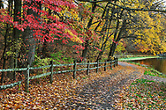 A Walking Path And Fence Along A Lake On A Rainy Day Amid The Brilliant Colors Of Autumn, Sharon Woods, Southwestern Ohio, USA