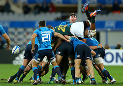 November 19, 2016 - Rome, Italy - Faf de Klerk (S) trying to catch the ball during a scrum  during the international match between Italy v South Africa at Stadio Olimpico on November 19, 2016 in Rome, Italy. (Credit Image: © Matteo Ciambelli/NurPhoto via ZUMA Press)
