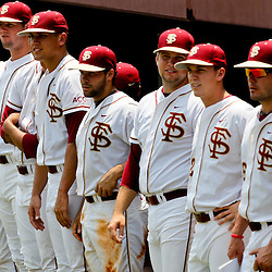 June 06, 2011; Tallahassee, FL, USA; Florida State Seminoles stand out of the dug out waiting for the final out during the ninth inning of the Tallahassee regional of the 2011 NCAA baseball tournament game against the Alabama Crimson Tide as play resumed following the suspension of play due to severe weather last night at Dick Howser Stadium. Florida State defeated Alabama 11-1 to advance to a super regional.  Mandatory Credit: Derick E. Hingle