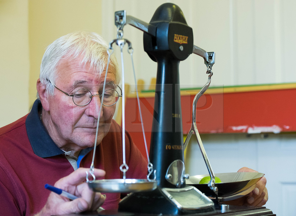 © Licensed to London News Pictures.04/08/15<br /> Egton, UK. <br /> <br /> <br /> Weigh man HARRY HEBDON checks the weight of one of the gooseberries during judging at the annual Egton Gooseberry Show. <br /> There are only two Gooseberry societies left in the country. One in Cheshire and one at Egton in North Yorkshire. The annual show in Egton uses traditional Avoridupois scales to measure the weight of the berries and members of the society are fanatical about trying to grow the best berries each year. <br /> <br /> Photo credit : Ian Forsyth/LNP