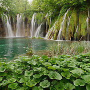 Waterfalls along the trail to the Upper Lakes. Plitvice Lakes National Park, Croatia