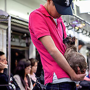 A young Korean citizen travelling the Seoul subway with his cat. #latergram #seoul #southkorea #korea #cat #publictransport #animal #public #abeautifulstrangedream #documentary