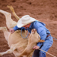 062615       Cable Hoover<br /> <br /> Paden Bray flips his calf in the tie down roping during the Best of the Best Timed Event Invitational youth rodeo Friday at Red Rock Park.