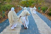 Inde, Gujarat, Palitana, temples de Shatrunjaya, pelerins jains // India, Gujarat, Palitana, Shatrunjaya temple, jain pilgrims
