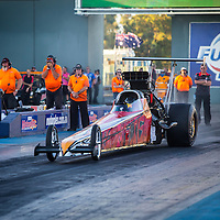 Shane Weston - 3301 - Endangered Species - CNE Top Alcohol Dragster - Top Competition (TA/D)
