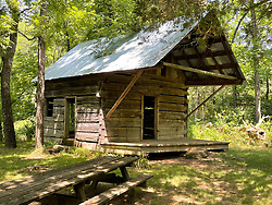 The Thomas Brown Cabin is located near the Falling Spring Mill. Thomas Brown and his wife Jane homestead the area in 1851. The cabin was built in the mid-to-late 1800s and is one of four cabins built near this site. Notable are the half-dovetail notches at the corners which help shed water away from the cabin. The cabin is near the Eleven Point National Wild and Scenic River in Missouri.