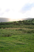 Preseli Hills landscape Mynachlogddu Pembrokeshire Wales