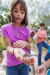 Girl holding and examining green darner dragonfly,  Mitchell Lake Audubon Center, San Antonio, Texas, USA.