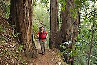 Backpacker hikes Pine Ridge Trail, Big Sur, California.