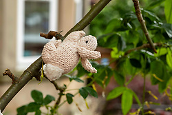 Pictured: Crochet Creatures<br /><br />Someone has been busy during lockdown by creating a mystical crocheted garden of creatures. Austrian Daniela McDonald, who lives in Polwarth, moved from Spain last September and has used the extra time at home to do some 'yarn bombing' picking up the habit from Spain of decorating trees.  She learnt crochet at school and knows that the skill is still being taught in Austrain schools to both boys and girls. Daniela has received many cards from passing children and she has asked them what theme she should try next.  The majority of passers by are looking forward to the ocean themed scene Daniela has planned.<br /><br />Ger Harley   EEm 28 June 2021