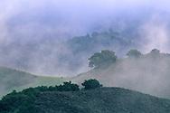 Morning light on hills and clouds along Foxen Canyon Road, Santa Barbara County, California