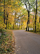 Trees turn color along a road in Devil's Lake State Park, near Baraboo, Sauk County, Wisconsin