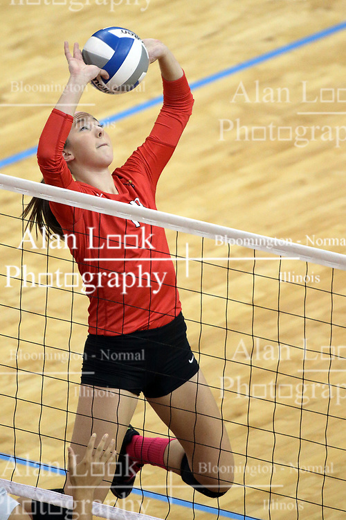 12 October 2013:   Kaitlyn Early during an NCAA womens volleyball match between the Missouri State Bears and the Illinois State Redbirds at Redbird Arena in Normal IL