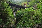 Liana Welty walks across a wood suspension bridge along the Annapurna Sanctuary Trek, Himalaya Mountains, Nepal.
