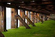 Green Seaweed, wood and rust on the half tide loading bay of the Folkestone Harbour Arm. Folkestone, Kent. (photo by Andrew Aitchison / In pictures via Getty Images)