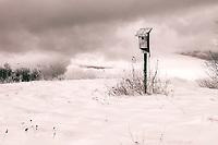 Infrared Winter Field Gilford, NH.  ©2015 Karen Bobotas Photographer