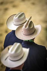Judges hats - Horse Inspection Reining  - Alltech FEI World Equestrian Games™ 2014 - Normandy, France.<br /> © Hippo Foto Team - Dirk Caremans<br /> 25/06/14