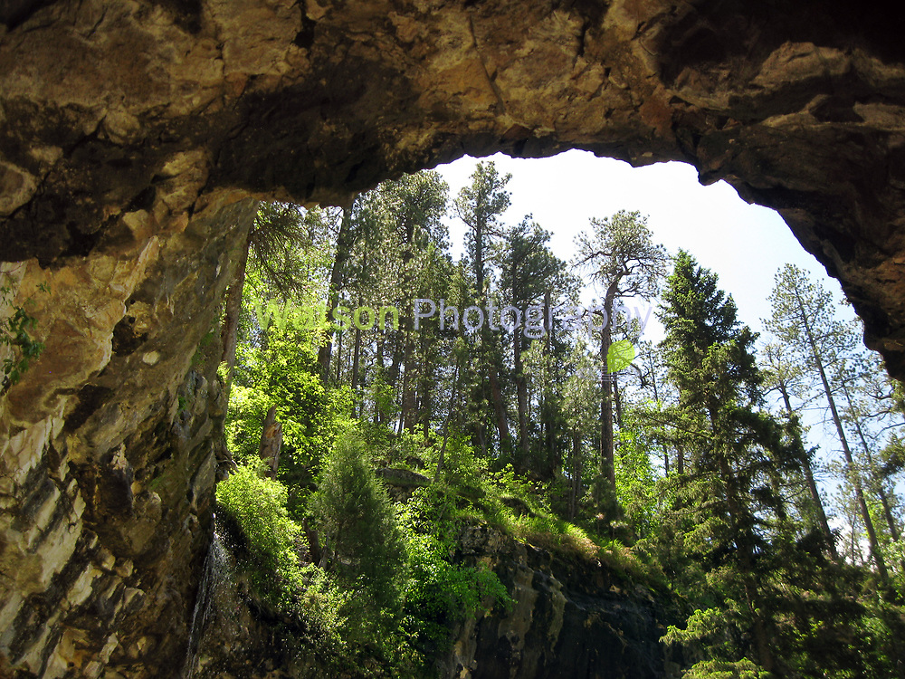 World Within Spearfish Canyon