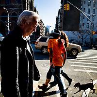 Hans Backe and New York Redbulls by Chris Maluszynski