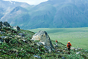 Alaska. Arctic National Wildlife Refuge ANWR . Hiking by Esetuk creek off the Hulahula River.