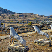 Delos. Greece. The grand row of five marble lion sculptures crafted and dedicated by the Naxians to the Sanctuary of Apollo in the 7th century BC. Situated on a natural terrace standing guard and overlooking the sacred lake, it is believed that there may have been between nine and nineteen lions. These are copies of the remaining five which are in the Delos museum. The small sacred island of Delos is the birthplace of the Greek God Apollo and his twin sister the Greek Goddess Artemis. Delos is one of most important ancient sites in the Mediterranean and is a UNESCO World Heritage Site.