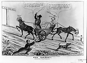 Whig Harmony 1848. The illustration shows Horace Greeley, one of Clay's most influential northern supporters, tries to drive the party wagon downhill toward 'Salt River' (a contemporary idiom for political doom). James S. Baillie