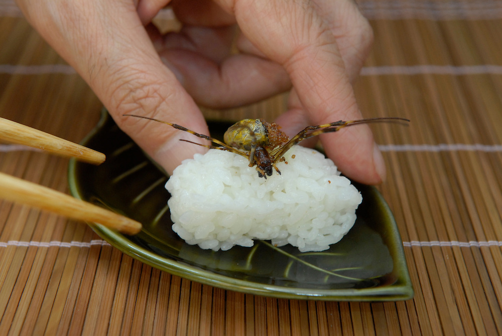 """Joro spider sushi.Tokyo resident Shoichi Uchiyama is the author of """"Fun Insect Cooking"""". His blog on the topic gets 400 hits a day. He believes insects could one day be the solution to food shortages, and that rearing bugs at home could dispel food safety worries."""