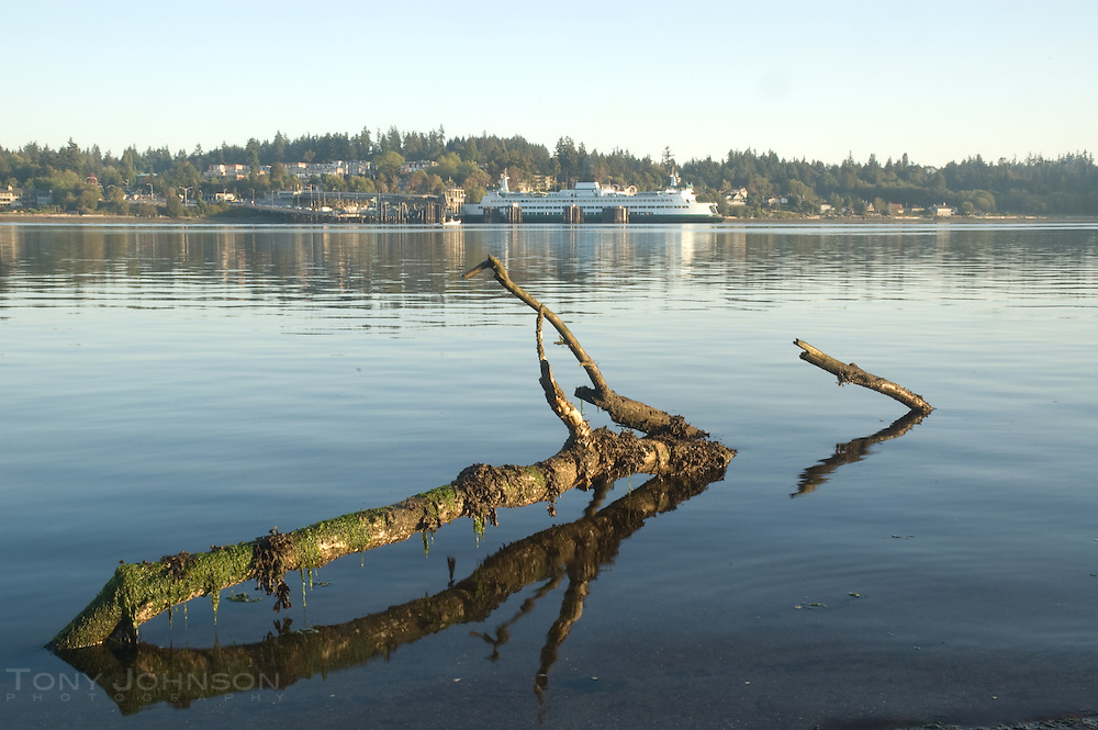log and ferry, Eagle Harbor, Bainbridge Island