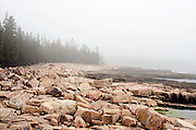 Fog lies thick over the pink granite ledges of Acadia National Park, Maine