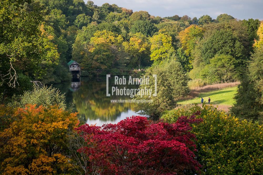 People enjoying the colourful autumn scene at Winkworth Arboretum in Surrey