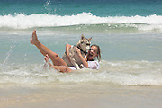 Beach Culture, Peasholm Beach, Scarborough, West Australia, husky