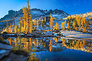 Tamaracks reflecting in Lake Leprechaun in Washington's Enchantment Lakes wilderness area