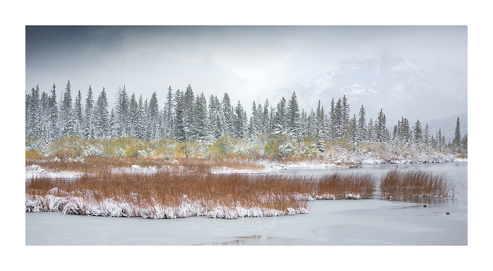 Autumn colour and easily season ice formation at Vermillion lakes, Banff National Park
